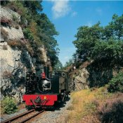 Vale of Rheidol Railway, Pays de Galles